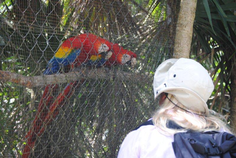 Belize2012-179