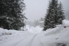 Road to refugio